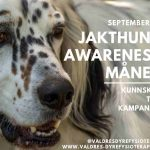 September er «Jakthund awareness»-måned